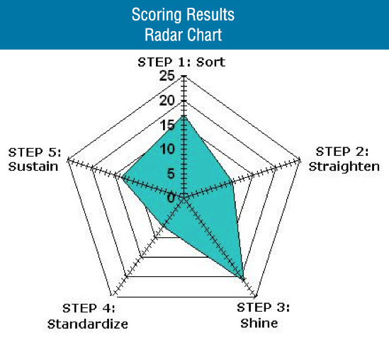 Audit Management » SteepGraph Systems